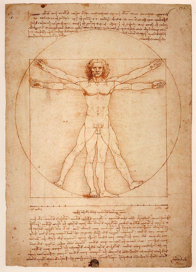 4.2. La proporción en la figura humana.  